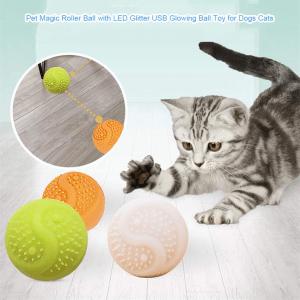 Dog Training Billiards - Silicone Training Ball: